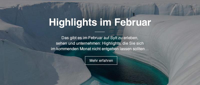 Highlights im November | Das gibt es im November auf Sylt zu erleben, sehen und unternehmen: Highlights, die Sie sich im kommenden Monat nicht entgehen lassen sollten… | Mehr erfahren