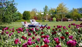Park der Gärten in Bad Zwischenahn | © Ammerland Touristik / Wordtmann