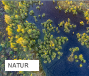 Luftaufnahme vom Neustädter Moor bei Wagenfeld | © Willi Rolfes